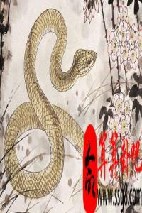 1965年属蛇的人2022年全年运势